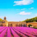 France Provence The Luberon Gordes Abbaye Notre Dame De Senanque 37yjqtw